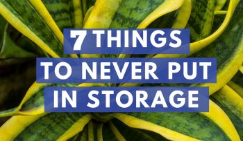 7 Things Not to Put in Storage